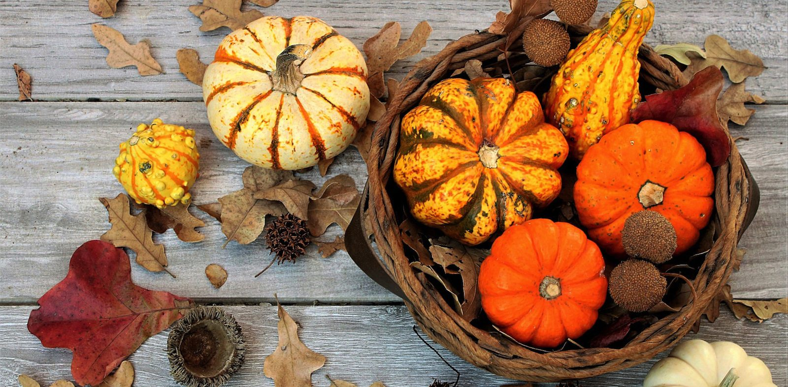 4 eco-friendly fall decor ideas